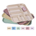 Plasdent Set-up Tray Divided Size B (Ritter) - Pastel Vanilla, Plastic, 13-1/2