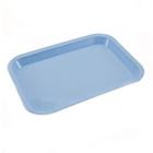 Plasdent Flat Tray, Size F (Mini) - Blue, Plastic, 9-5/8