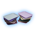 Plasdent Set-up Tray Flat Size B (Ritter) - Neon Purple, Plastic, 13-3/8