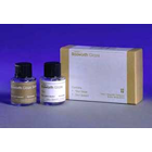 Glaze Acrylic Resin Polish Standard Kit: 1 - 12cc Solvent and 1