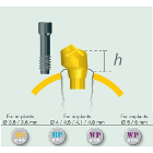 ETK 30 degree Plural Angulated Abutment Natural Implant 3.5mm NP 4.6 mm h: 2.0 mm Supplied