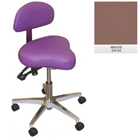 Galaxy Hygienist Stool with Back Support - Mauve Color. With 2-way adjustable