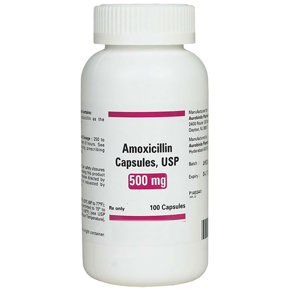 Amoxil 500 * Canadian amoxil! South Miami Project – B ...