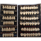 JSP Polymer Resin Denture Teeth A2 Upper + Lower, 12 Sets