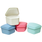 Defend Denture Box - Assorted Colors 3