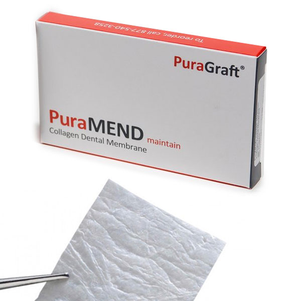 PuraMEND maintain Collagen Bovine Membrane 20 x 3