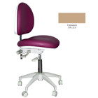 Mirage Doctor's Stool - Cinnamon Color. Dimensions: Backrest Vertical