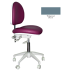 Mirage Doctor's Stool - Wedgewood Color. Dimensions: Backrest Vertical