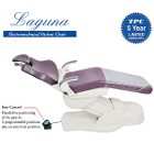 Laguna Electromechanical Patient Dental Chair. Two programmable positions, one