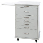 "TPC Assistant's (North Carolina) Mobile Cabinet - Grey. Dimensions: 21.5""W x"